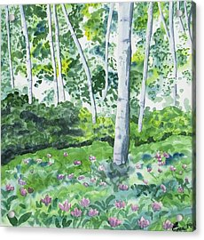 Acrylic Print featuring the painting Watercolor - Spring Forest And Flowers by Cascade Colors