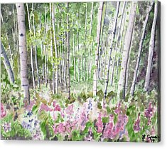 Acrylic Print featuring the painting Watercolor - Summer Aspen Glade by Cascade Colors