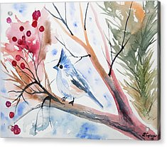 Watercolor - Tufted Titmouse With Winter Berries Acrylic Print