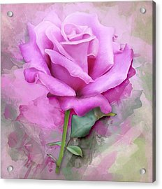 Watercolour Pastel Lilac Rose Acrylic Print