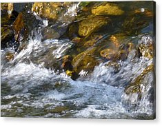 Acrylic Print featuring the photograph Watercourse by Jean Bernard Roussilhe