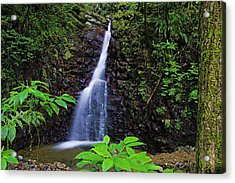 Waterfall-1-st Lucia Acrylic Print by Chester Williams