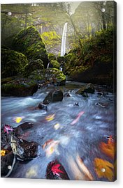 Waterfall And Stream With Fluxing Autumn Leaves Acrylic Print