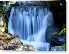 Waterfall At Dow Gardens, Midland Michigan Acrylic Print