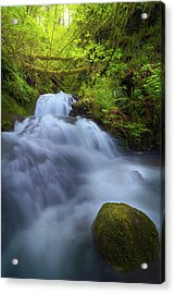Waterfall At Shepperds Dell Falls Acrylic Print by David Gn