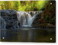 Waterfall At Sweet Creek Hiking Trail Complex Acrylic Print by David Gn
