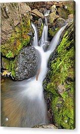 Waterfall Atop Wolf Creek Pass - Colorado - Nature Acrylic Print by Jason Politte