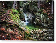 Waterfall In Enchanted Forest Acrylic Print