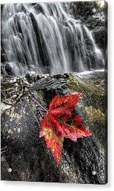 Waterfall In Fall Acrylic Print
