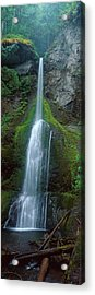 Waterfall In Olympic National Rainforest Acrylic Print