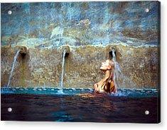 Waterfall Mermaid Acrylic Print by Karl Alexander