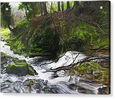 Waterfall Near Tallybont-on-usk Wales Acrylic Print by Harry Robertson
