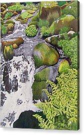 Waterfall On Skye Acrylic Print