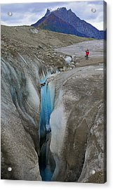 Waterfall Root Glacier Acrylic Print by Alan Lenk