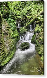 Acrylic Print featuring the photograph Waterfalls And Rapids On The White Opava Stream by Michal Boubin