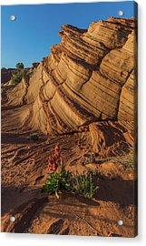 Waterhole Canyon Evening Solitude Acrylic Print