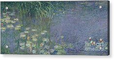 Waterlilies Morning Acrylic Print