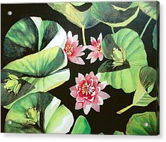 Waterlilies With Frogs Acrylic Print