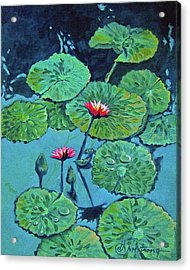 Waterlily Acrylic Print by Denise Armstrong
