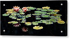 Acrylic Print featuring the painting Waterlily Panorama by Marilyn Smith