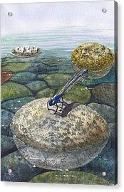 Waters Edge Acrylic Print