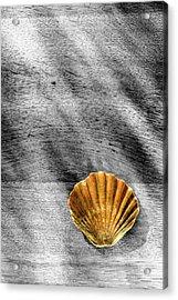 Waterside Memory Acrylic Print