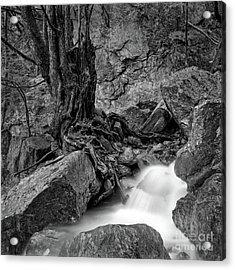 Waterside Acrylic Print