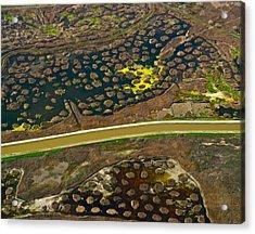Waterworks 5 Acrylic Print by Sylvan Adams