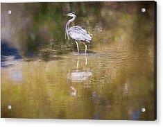 Watery World - Acrylic Print
