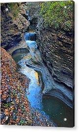 Watkins Glen Creek Acrylic Print by Jessica Jenney