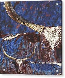 Watusi Blues Acrylic Print
