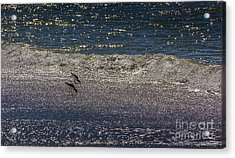 Waves And Sparkling Sand Acrylic Print by Marvin Spates