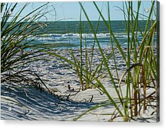 Waves Through The Grass Acrylic Print
