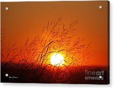 Waving Sun Acrylic Print by Yumi Johnson