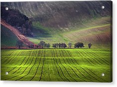 Wavy Hills  Acrylic Print by Jenny Rainbow