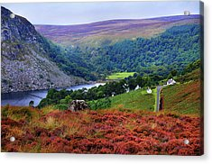 Acrylic Print featuring the photograph Way Home. Wicklow. Ireland by Jenny Rainbow