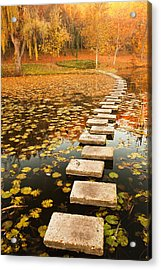 Way In The Lake Acrylic Print by Evgeni Dinev