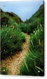 Way Through The Dunes Acrylic Print