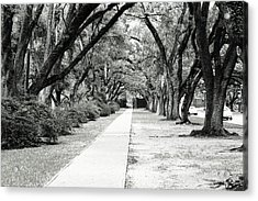 Way To Success Acrylic Print by Gracey Tran