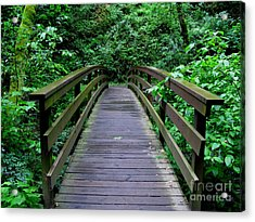 We All Have Bridges To Cross Acrylic Print by PJ  Cloud