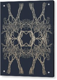 We Are All Made Of Stars Tree 12 Hybrid 1 Acrylic Print