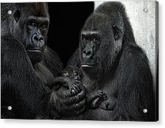 We Are Family Acrylic Print by Joachim G Pinkawa