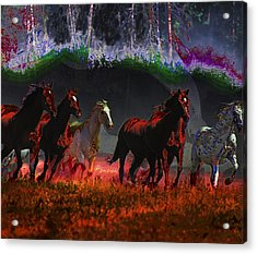 We Are Free  Acrylic Print