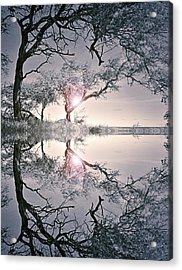 We Are In This Together Acrylic Print