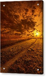 We Ourselves Must Walk The Path Acrylic Print by Phil Koch