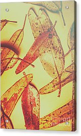 Weathered Autumn Leaves Acrylic Print