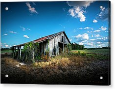 Weathered Acrylic Print by Marvin Spates