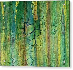 Weathered Moss Acrylic Print by Alan Casadei