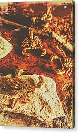 Weathered Scorpion Art Acrylic Print
