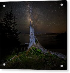 Weathered Stump Under The Stars Acrylic Print by Brent L Ander